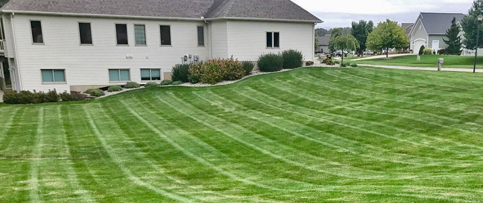 The Benefits of Routine Lawn Mowing in Michigan