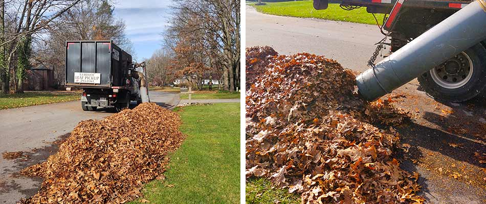 Curbside leaf removal services performed at a home in Wyoming, MI.